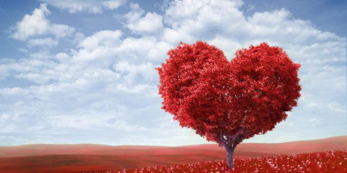 Idee regalo San Valentino 2015