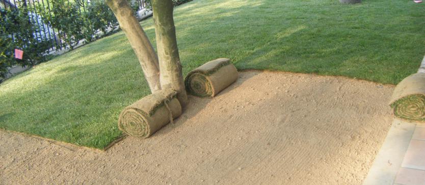 Posa rotoli tappeto erboso