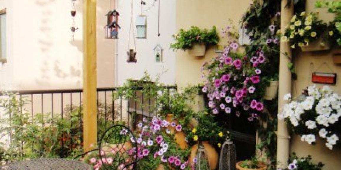 Pensione piante Garden Valli estate 2018